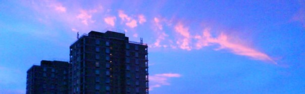 cropped-plaistow-tower-blox-at-dawn1.jpg